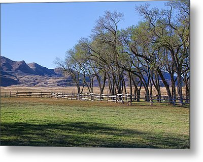 Metal Print featuring the photograph On The Ranch by Ely Arsha
