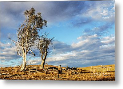 On The Road To Cooma Metal Print