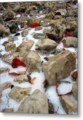 On The Rocks Metal Print by Lindsey Orlando
