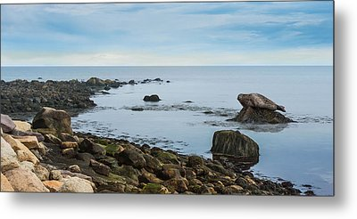 Metal Print featuring the photograph On The Rocks by Robin-lee Vieira