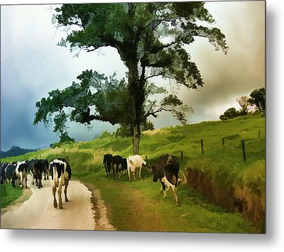 On The Way Home  Metal Print by Elaine Manley