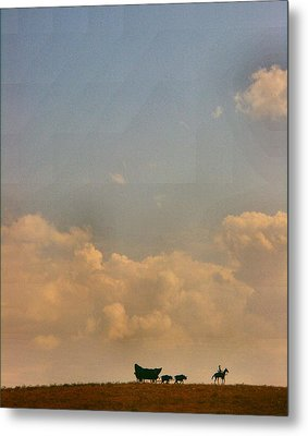 On The Way To Forever Metal Print by Lynne and Don Wright