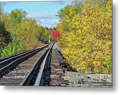 Metal Print featuring the photograph On To Fall by Glenn Gordon
