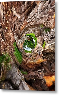 Metal Print featuring the photograph Once A Tree by Pennie  McCracken