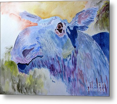 Once In A Blue Moose Metal Print by Sandy McIntire