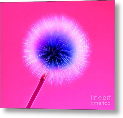 Once In A Lifetime Wish Metal Print by Krissy Katsimbras