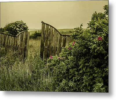 Once Was A Garden Metal Print by Odd Jeppesen