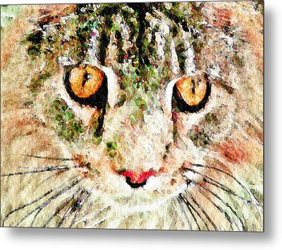One Cool Cat Metal Print by Terry Mulligan
