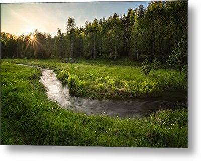 One Day Of Summer Metal Print by Tor-Ivar Naess