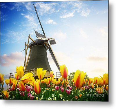 One Dutch Windmill Over  Tulips Metal Print