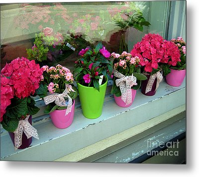Metal Print featuring the photograph One For You - One For Me by Susanne Van Hulst