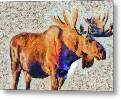 Metal Print featuring the painting One Handsome Moose by Elaine Ossipov