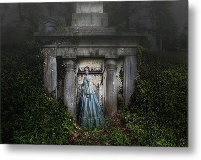 One Last Look Metal Print by Tom Mc Nemar