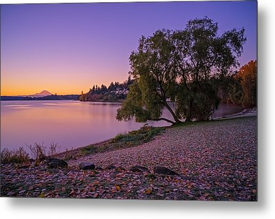 One Morning At The Lake Metal Print