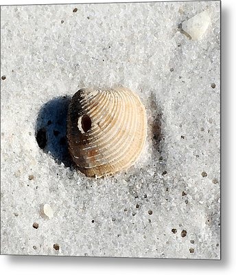 One Orange Striped Sea Shell With Hole Macro On Fine Wet Sand Square Format Watercolor Digital Art Metal Print by Shawn O'Brien