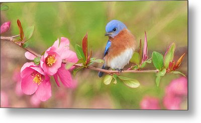 One Touch Of Nature Metal Print by Lori Deiter