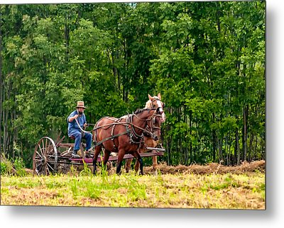 One With The Land Metal Print by Steve Harrington