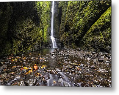 Oneonta Gorge Metal Print by Mark Kiver