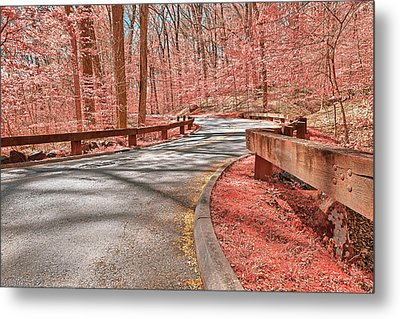 Opalescent Forest Road Metal Print by Nicolas Raymond