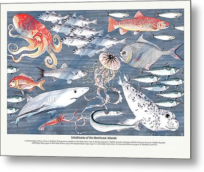 Open Sea Annotated Metal Print by Jacqueline Colley