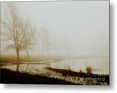 Metal Print featuring the photograph Open Space by Iris Greenwell
