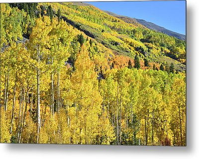 Metal Print featuring the photograph Ophir Road Hillside by Ray Mathis