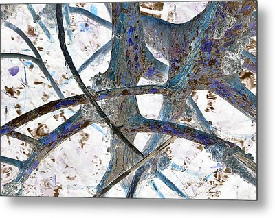 J-lintz - Natural Interchange Metal Print