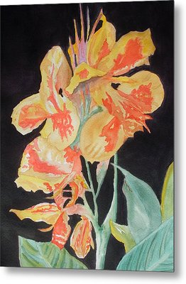 Orange And Yellow Canna Lily On Black Metal Print by Warren Thompson