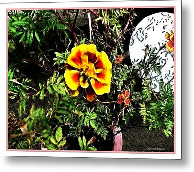 Metal Print featuring the photograph Orange And Yellow Flower by Joan  Minchak