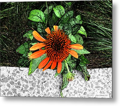 Metal Print featuring the photograph Orange At Highline Nyc by Joan  Minchak
