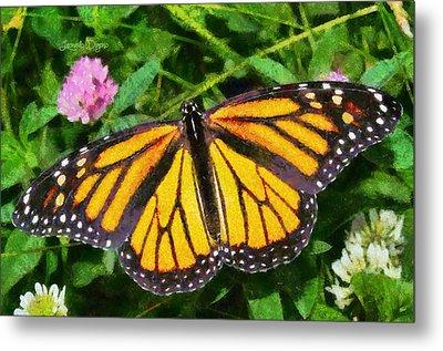 Orange Butterfly Metal Print by Leonardo Digenio