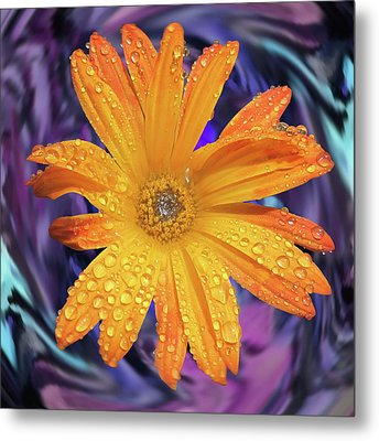 Orange Daisy Swirl Metal Print
