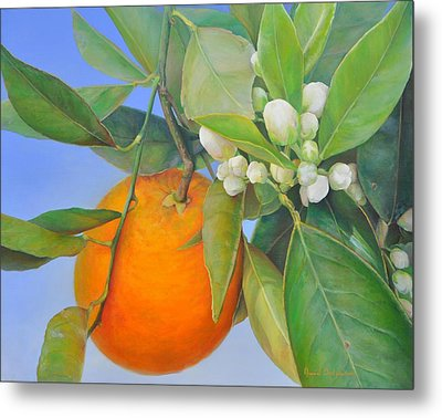 Orange En Bouton Metal Print by Muriel Dolemieux