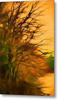 Orange Fall Sky Metal Print by Lilia D