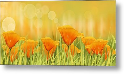 Orange Field Metal Print by Veronica Minozzi