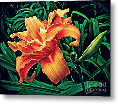 Orange Frenzy Metal Print by Sarah Loft