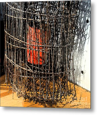 Orange In Wire Metal Print by Gary Everson