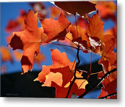 Orange Leaves Metal Print by Mikki Cucuzzo