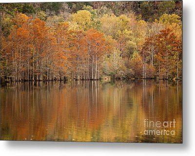 Metal Print featuring the photograph Orange Pool by Iris Greenwell