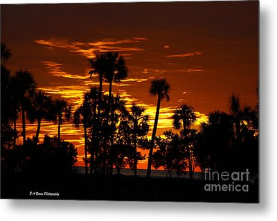 Orange Skies Metal Print by Barbara Bowen