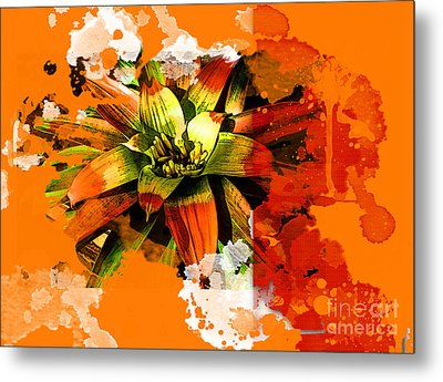 Orange Tropic Metal Print
