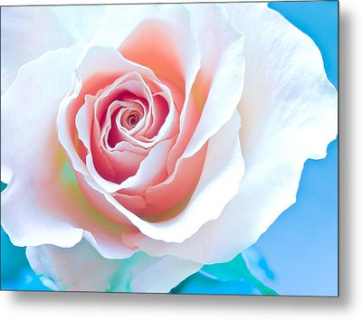 Orange White Blue Abstract Rose Metal Print