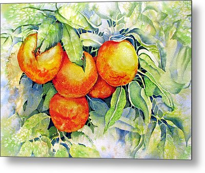 Oranges-in-italy Metal Print by Nancy Newman