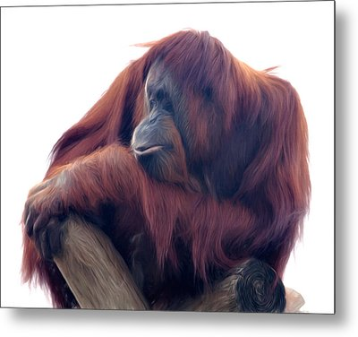 Metal Print featuring the photograph Orangutan - Color Version by Lana Trussell