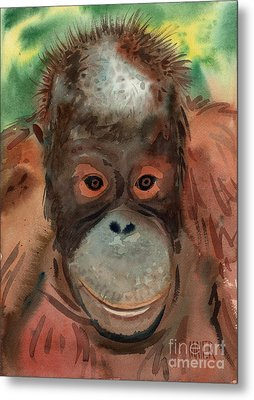 Orangutan Metal Print by Donald Maier