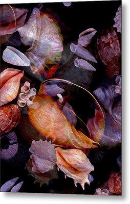 Orbiting Seashells Metal Print by Lynda Lehmann