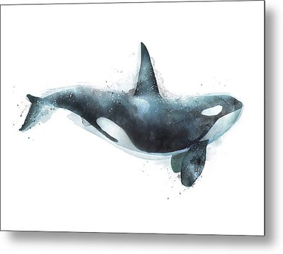 Orca Metal Print by Amy Hamilton
