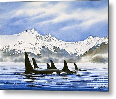 Orca Metal Print by James Williamson