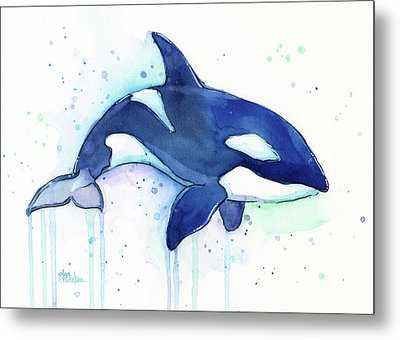 Orca Whale Watercolor Killer Whale Facing Right Metal Print by Olga Shvartsur