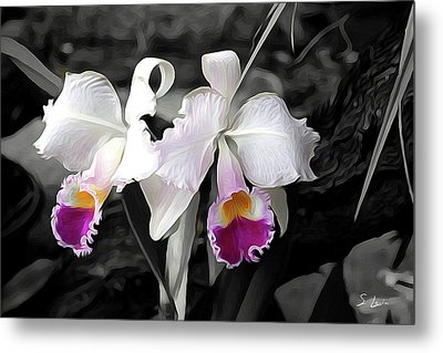 Orchid #5501 Inimitable Flower Metal Print